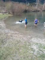 Cara beim Schwimmen