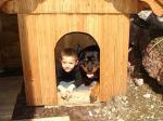 Mit seinem Spielgefährten Tobias teilt Ares auch sein Häuschen