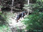 Ares beim Wandern