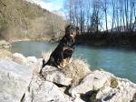 Ares mit 2 Jahren!